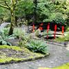 Butchard Gardens Victoria 5