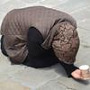 Begging in Venice