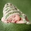 Kidzmom---Little Sprout
