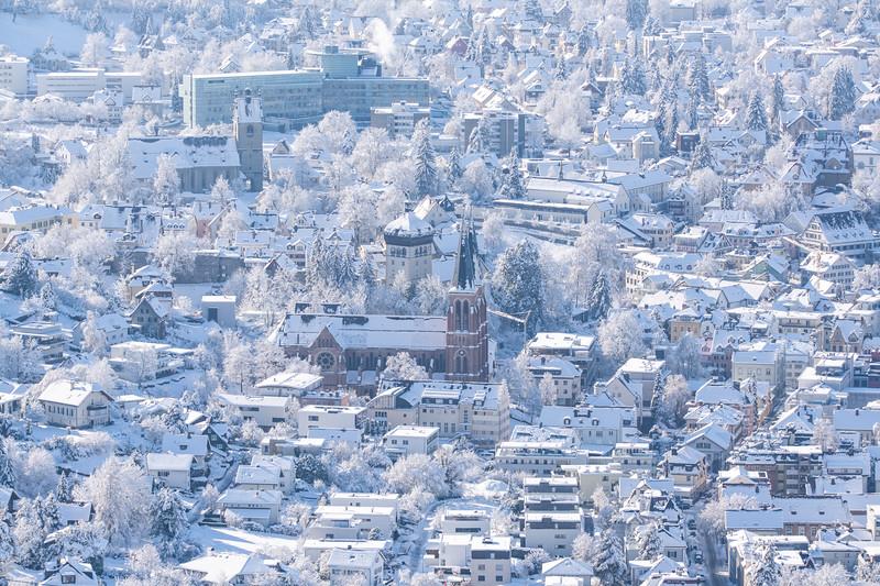 Detail von Bregenz vom Haggen