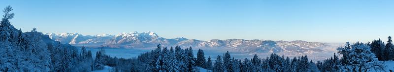 Wintermorgen überm Rheintal
