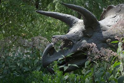 The Hidden Dinosaur