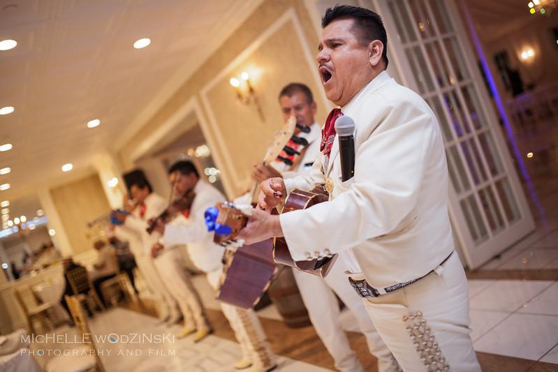 Vanessa & Natalie's Wedding - Lesbian Wedding - Chateau Busche - Chicago Wedding Photographer - Michelle Wodzinski Photography & Film - Fireheart-44-125