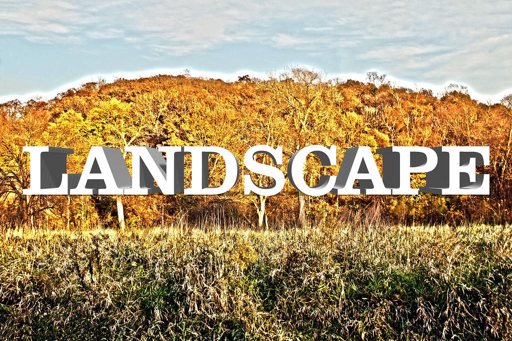 WEEK 60 - LANDSCAPE