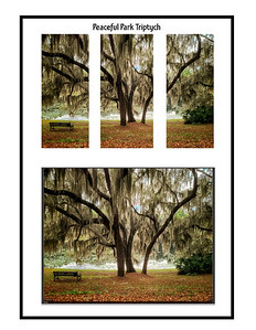 Park Triptych