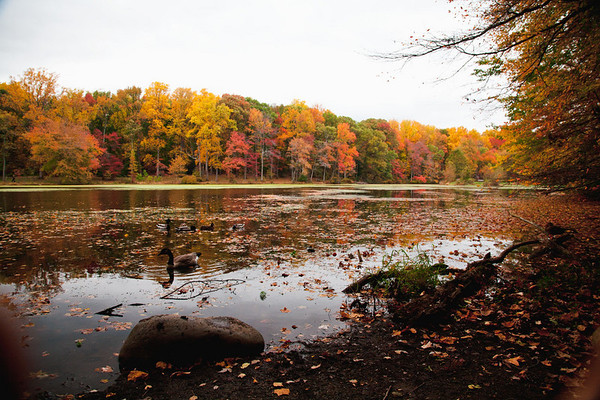 Walk Around Greenbelt Lake in the Fall