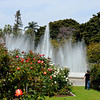 Walking at the Rose Garden at Exposition Park in Los Angeles California