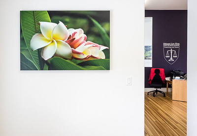 Daisy Wilcox Plumeria custom-printed on canvas brings a gorgeous touch of nature to the Ettinger Law Firm waiting room in Southampton NY