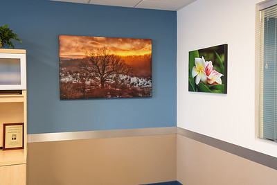 Custom printed photo art in conference room at Ettinger Law Firm, Lake Success NY