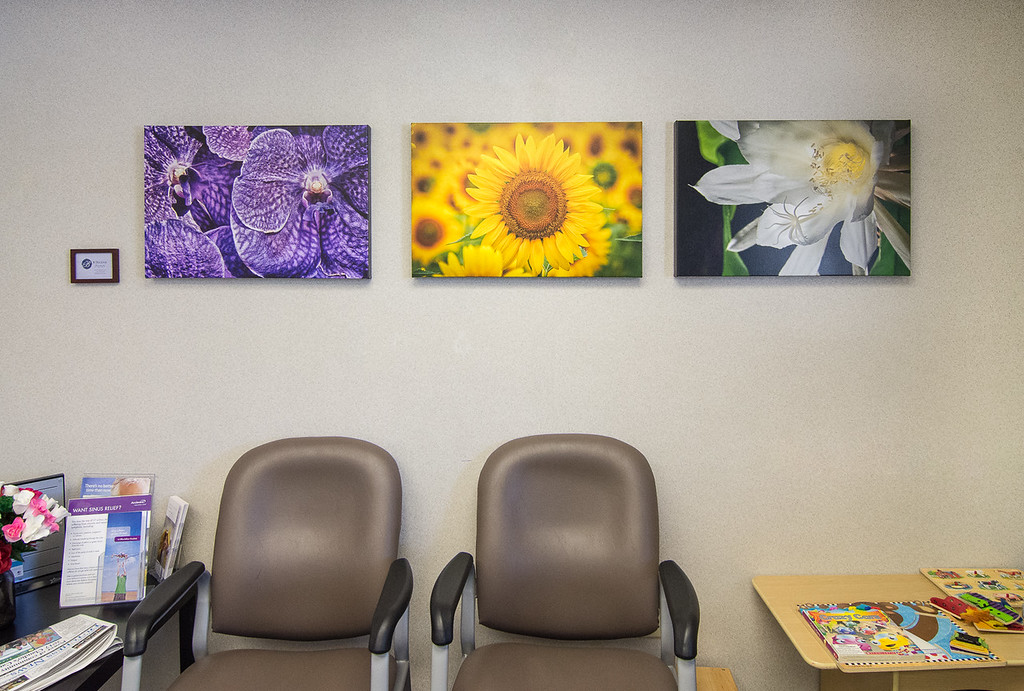 Custom-printed photo art for reception area at Dr. Kortbus' office in Red Hook, NJ
