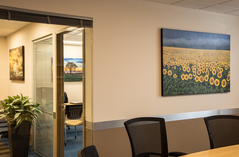Bringing the beauty of nature into Ettinger Law Firm, Lake Success NY