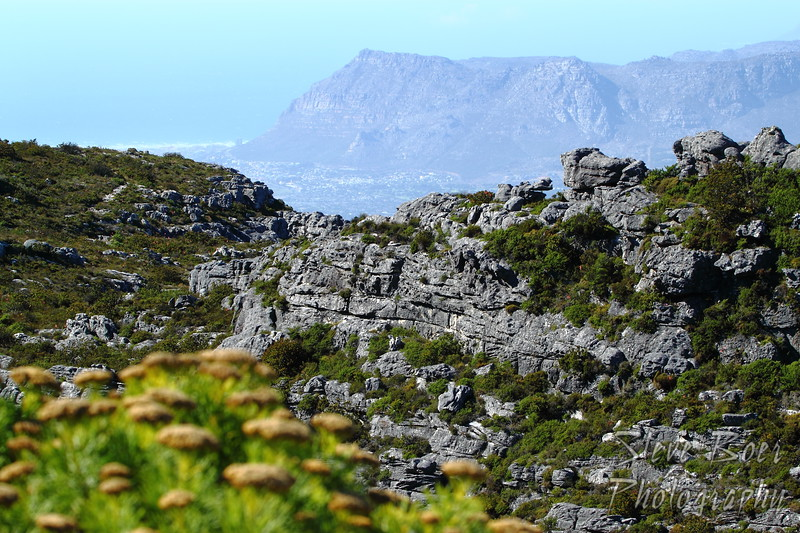 Another view from Table Mountain