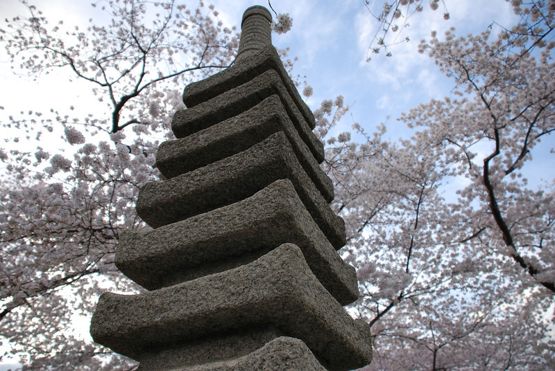 Title: Pagoda<br /> Date: March 2008