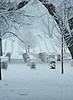 Winter at Arlington
