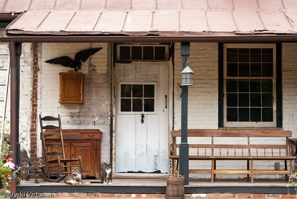 Cats - Old Town, Alexandria, VA, USA