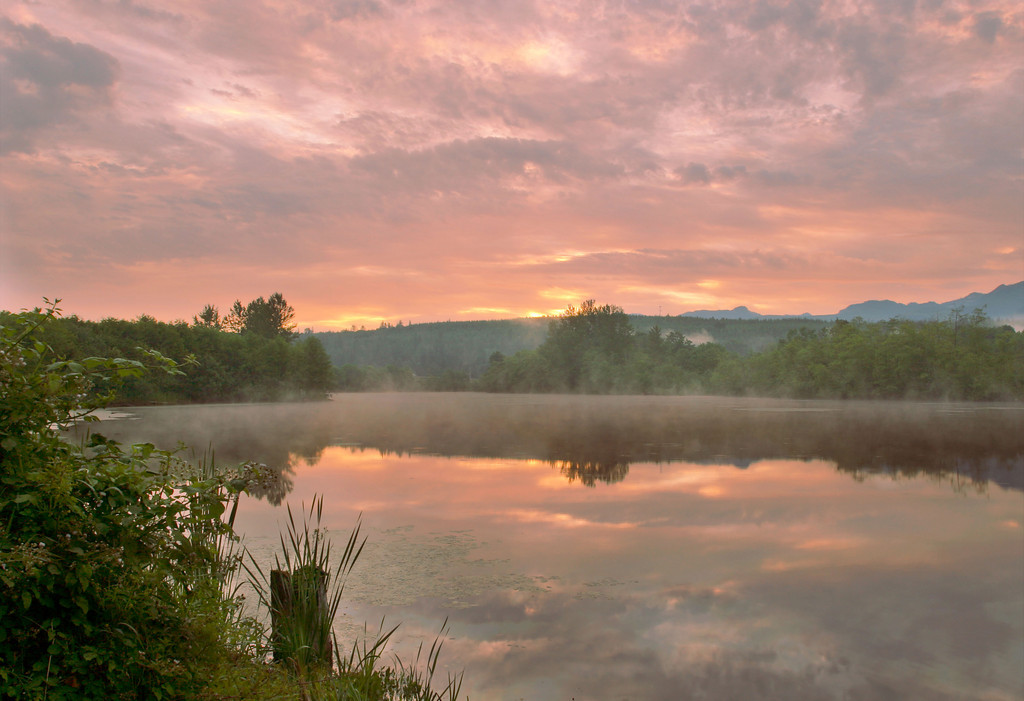 Mill Pond Sunrise