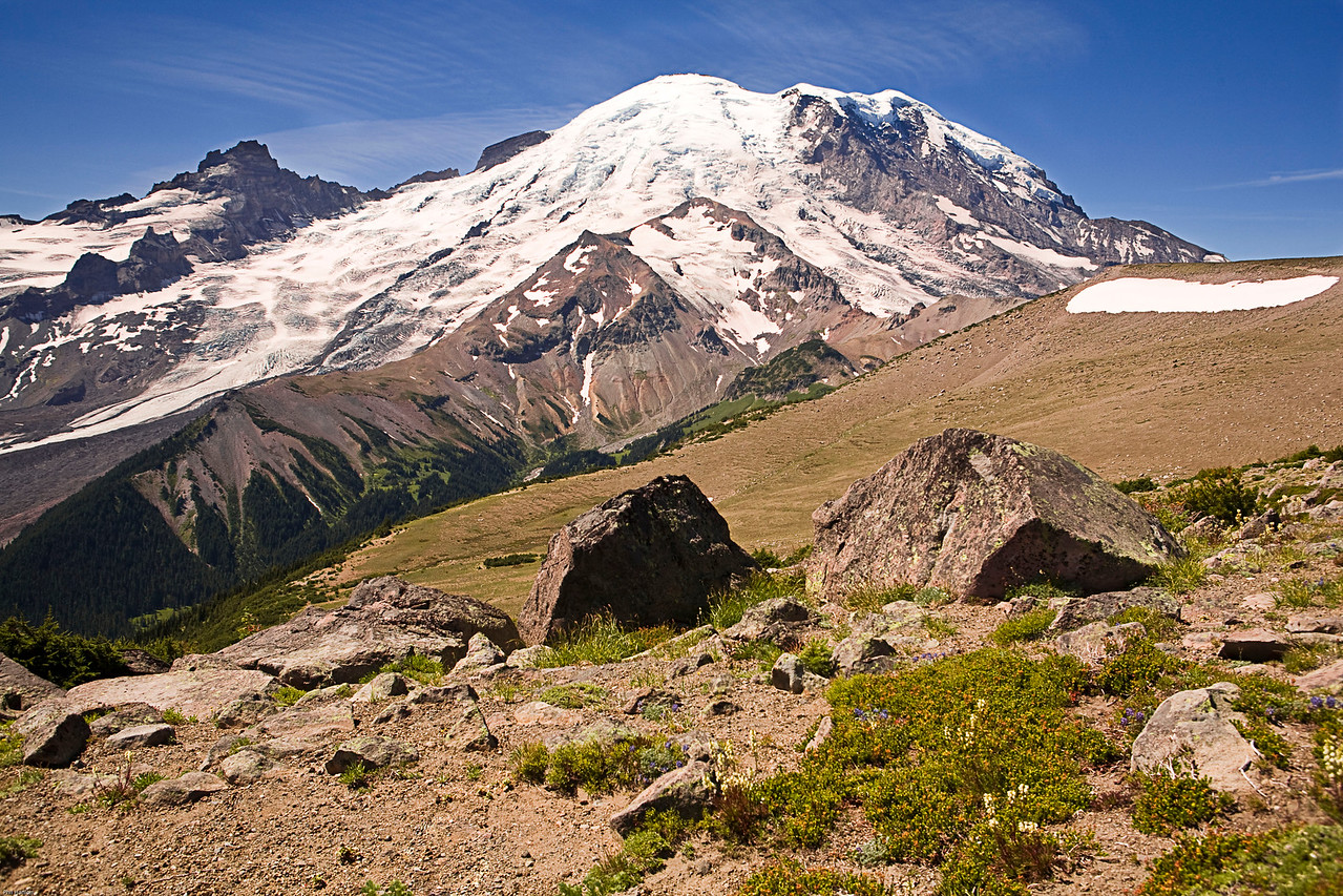 Mt Rainier, from Burroughs Mountain loop.