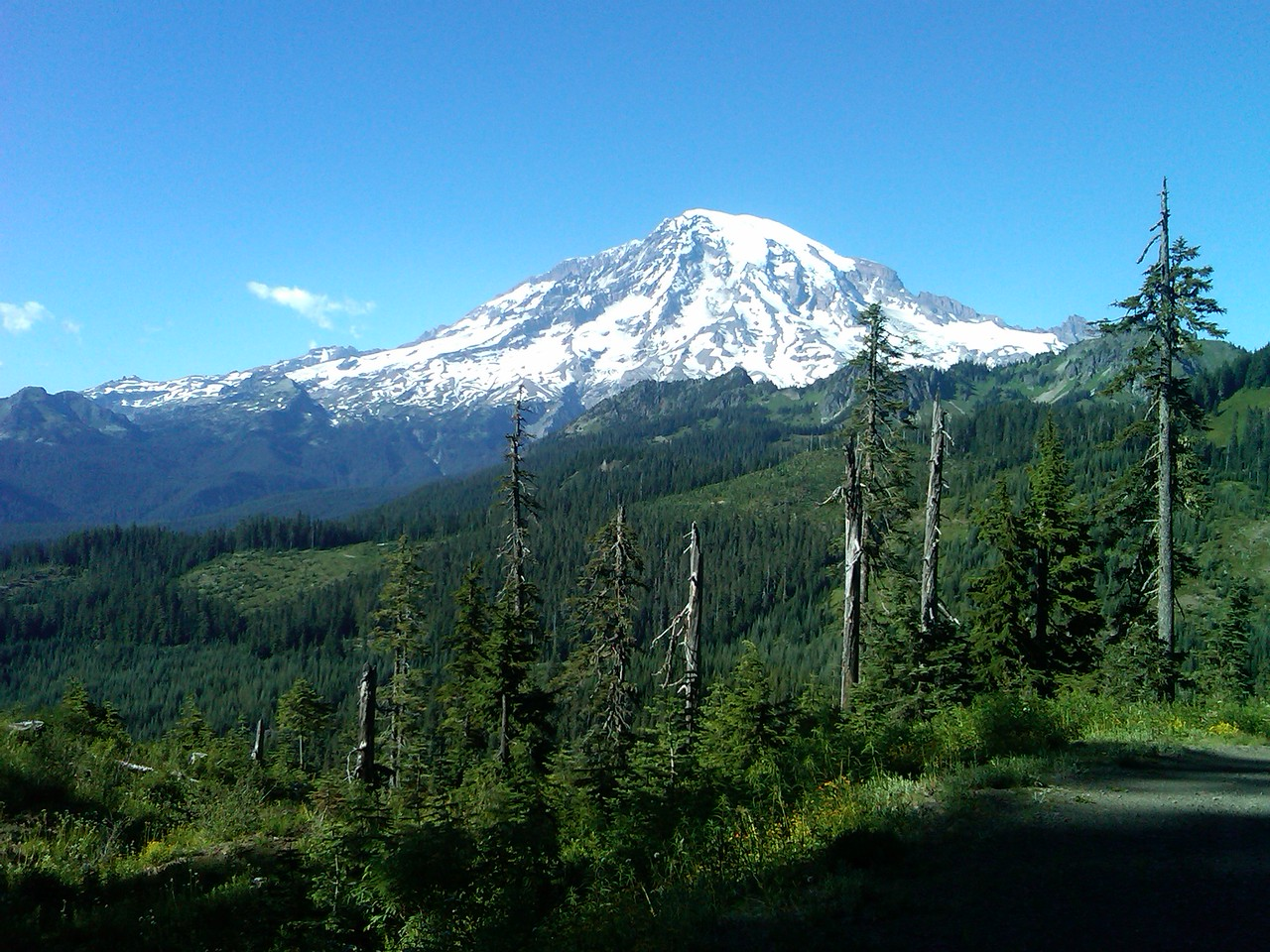 Mt Rainier,cameracphone capture