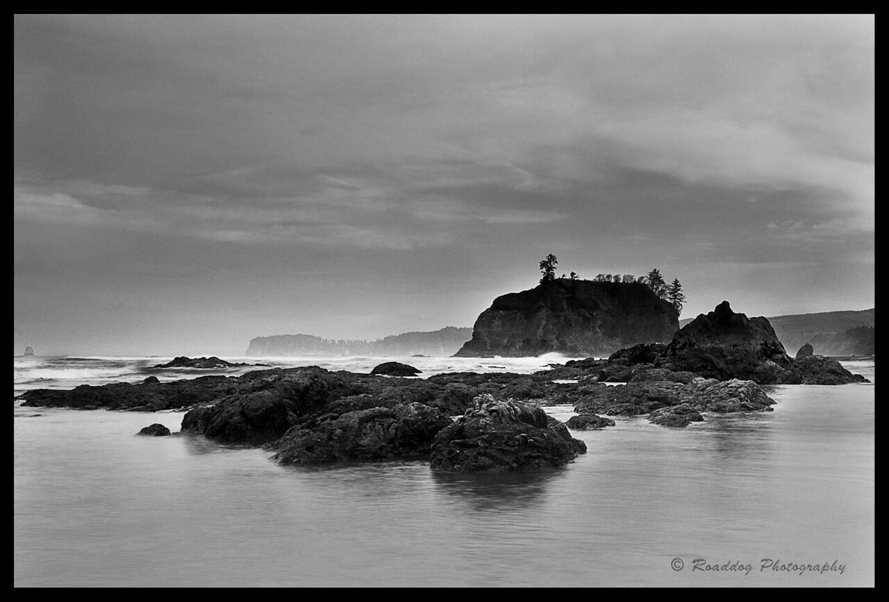 Gray Day @ Ruby Beach