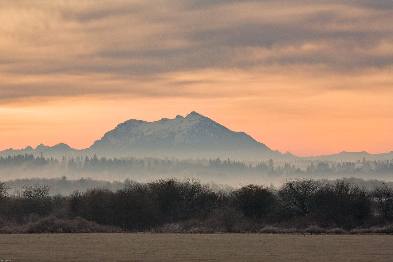 Skagit Valley Fog