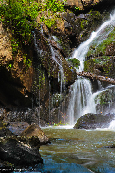 Turtle Town Falls, TN 2011