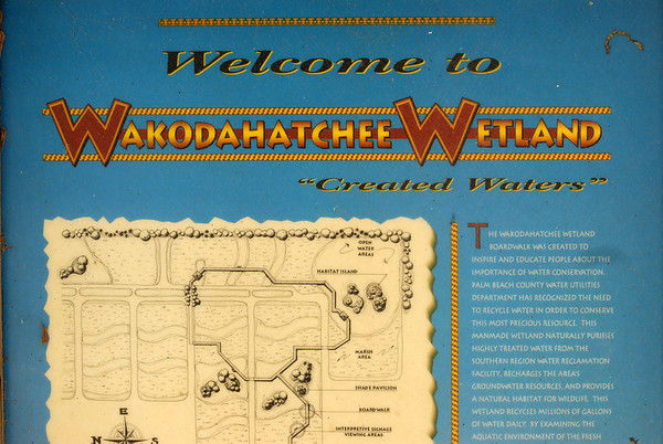 Wakodahatchee Wetlands:  November 23, 2006