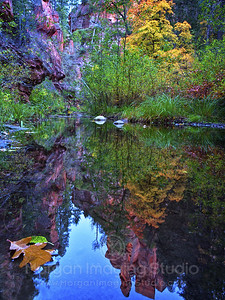 Autumn in Oak Creek Canyon, Arizona