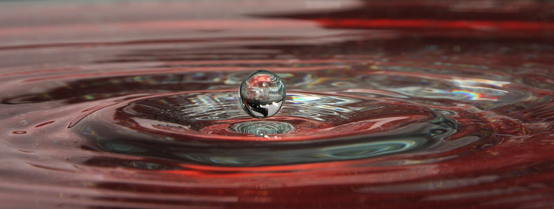 IMG_9575 Red drop I