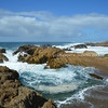 Point Lobos coastal walk I