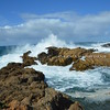 Point Lobos coastal walk II