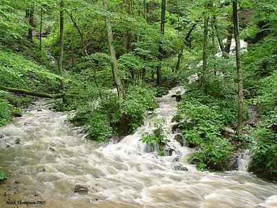 Otter Creek Park. Sony DSC-717