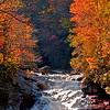 Western NC Fall colors_10-15-12_0059