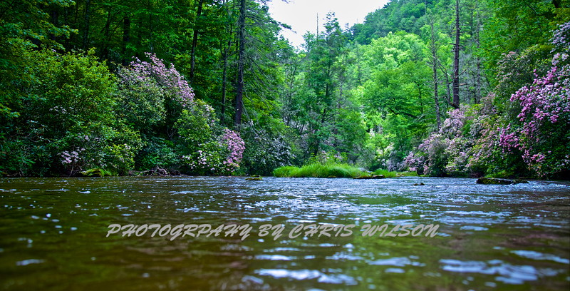 WNC Summer 2015 HDR 10