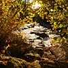 Western NC Fall colors_10-15-12_0065