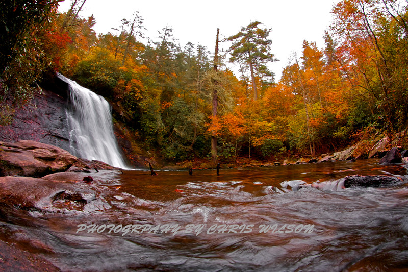 Western NC Fall colors_10-11-12_0006