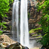 """""""Toccoa Falls in Early Spring"""""""