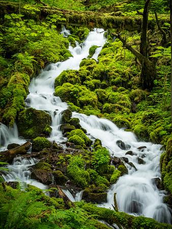 Wahkeena Creek 4