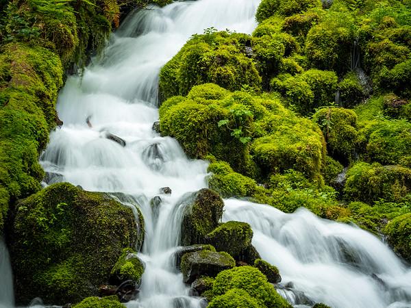 Wahkeena Creek 3