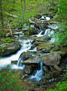 """Little Amicalola Creek #1"""