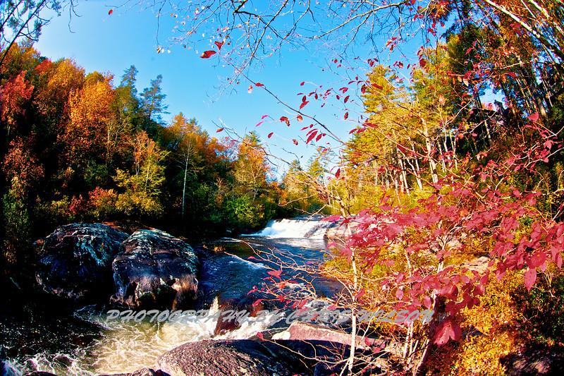 Western NC Fall colors_10-09-12_0002