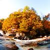 Western NC Fall colors_10-15-12_0062