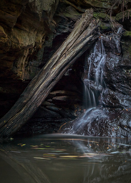 Glow Worm Glen Falls