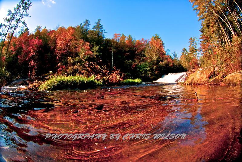 Western NC Fall colors_10-09-12_0003