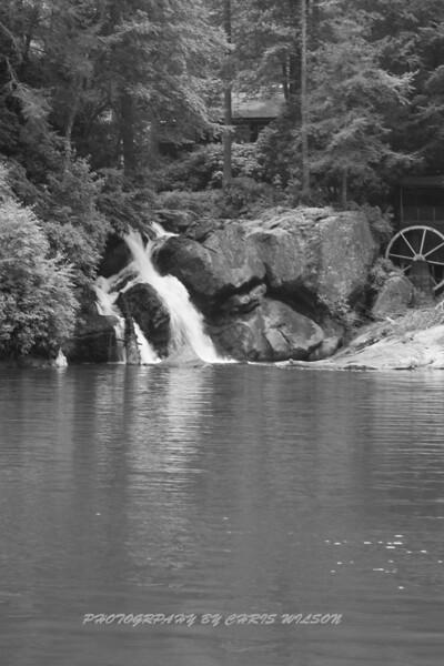 N C  Waterfalls-C Wilson Photo_0892_06-06-20