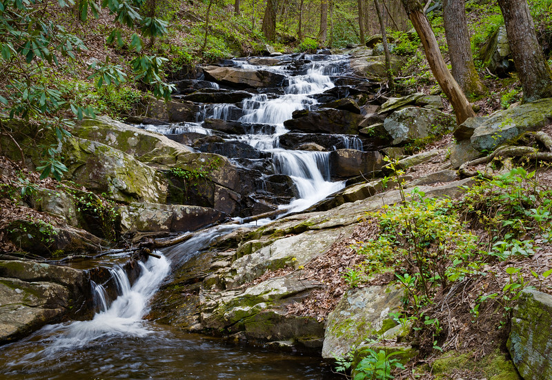 """Goldmine Branch Creek"""