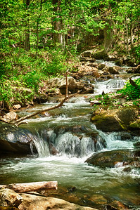 """Little Amicalola Creek #4"""