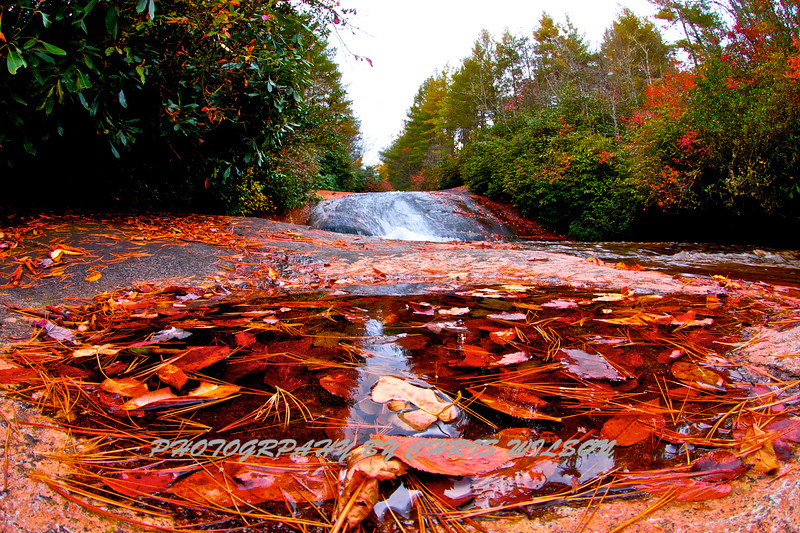 Western NC Fall colors_10-12-12_0016