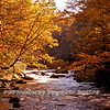 Western NC Fall colors_10-15-12_0048