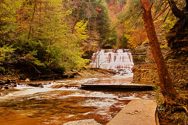 Stony Brook Falls in Dansville, New York