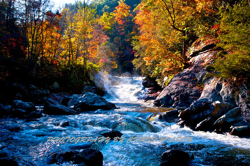 Western NC Fall colors_10-15-12_0060